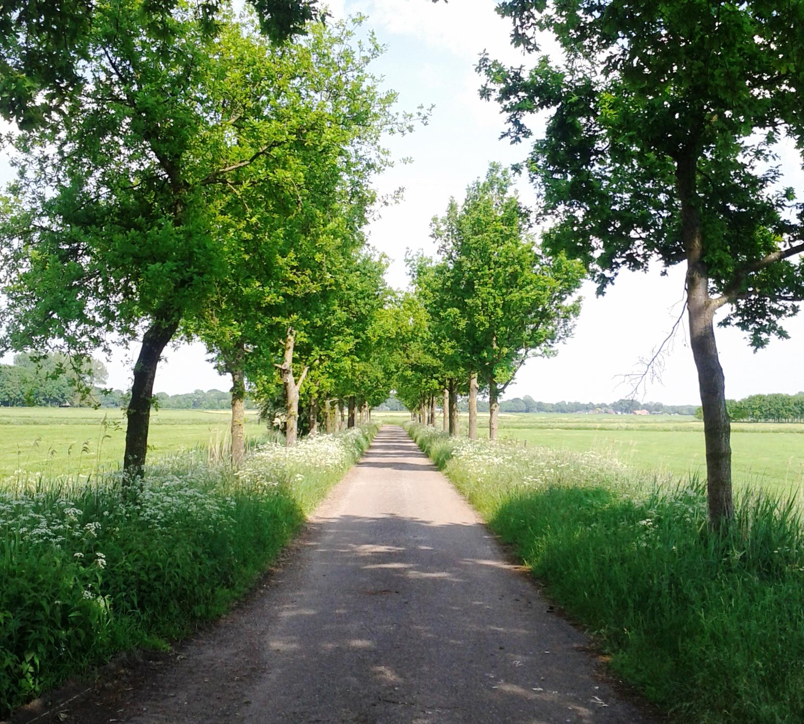 Poort van Lochem open